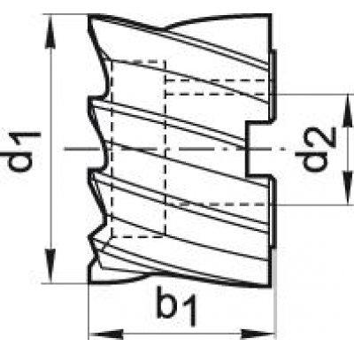 Válcová čelní fréza DIN1880 HSSCo8 typ N 100x50mm 100x50mm FORMAT - pre215441.jpg